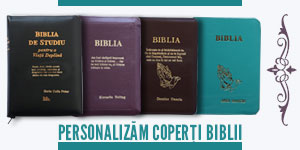 Banner http://librariact.ro