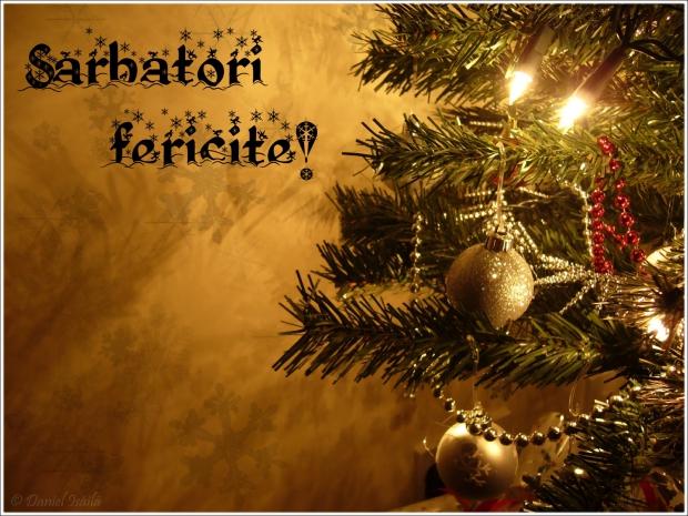 sarbatori_fericite_1_01979300