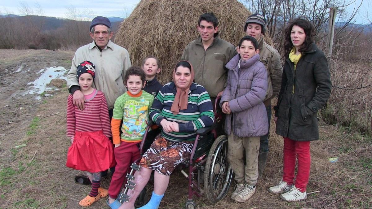 Vrem sa muncim - Doneaza un cal si o vaca pentru o familie de frati penticostali