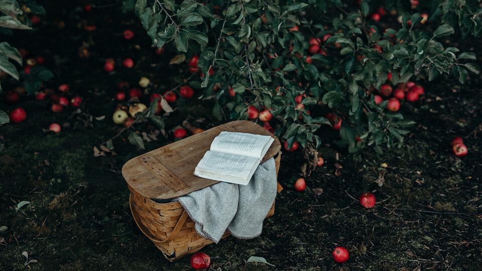 Devotional – Un Cuvant viu