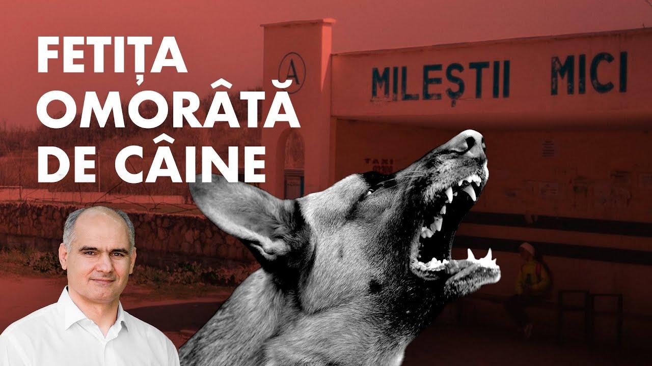 Predica despre fetița omorâtă de câine din Mileștii Mici | Pastor Vasile Filat