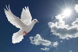 Aurel Gheorghe: Nu prin putere, nici prin tărie, ci prin Duhul Domnului!