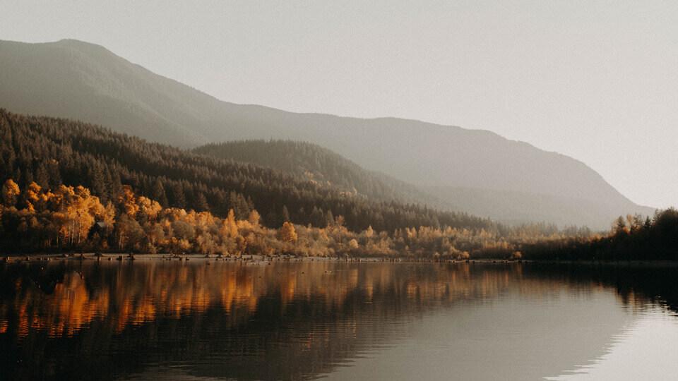 Devotional – Nu te teme de ceea ce vezi