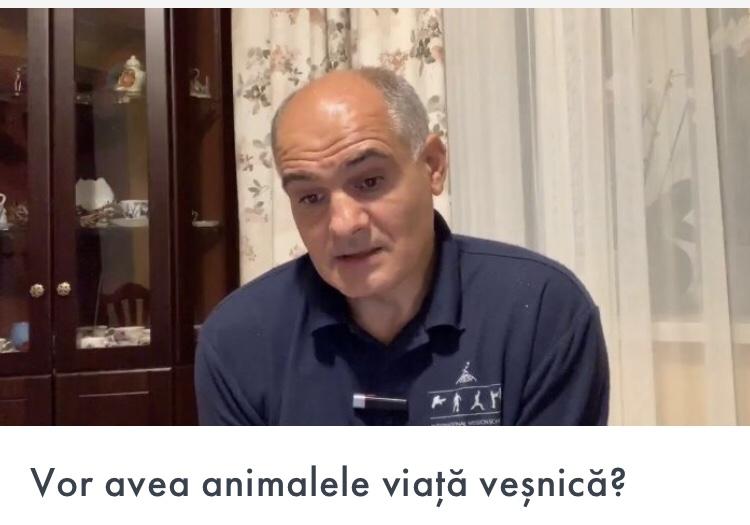 Vor avea animalele viață veșnică?